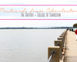 Postcards from Charleston :: The Battery & College of Charleston