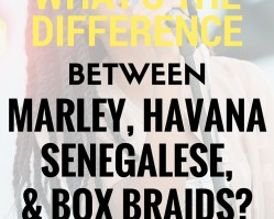 Natural Hair Talk: The Difference Between Marley, Havana, Senegalese, + Box Braids