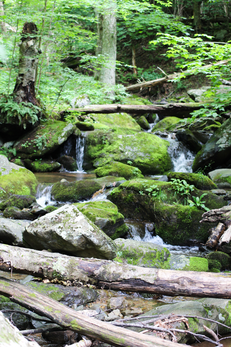 hiking-the-appalachians-8