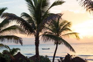 Visual Travel Diaries: Tulum Honeymoon